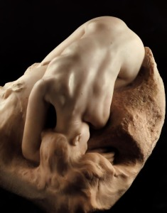 Rodin 6